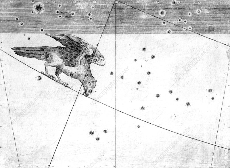 Corvus constellation, 1603