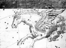Pegasus constellation, 1603