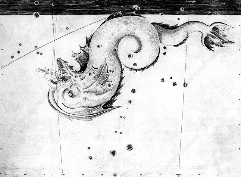 Piscis Notius constellation, 1603