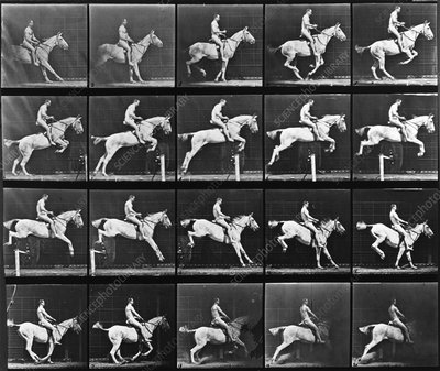 High-speed horse jump sequence by Muybridge