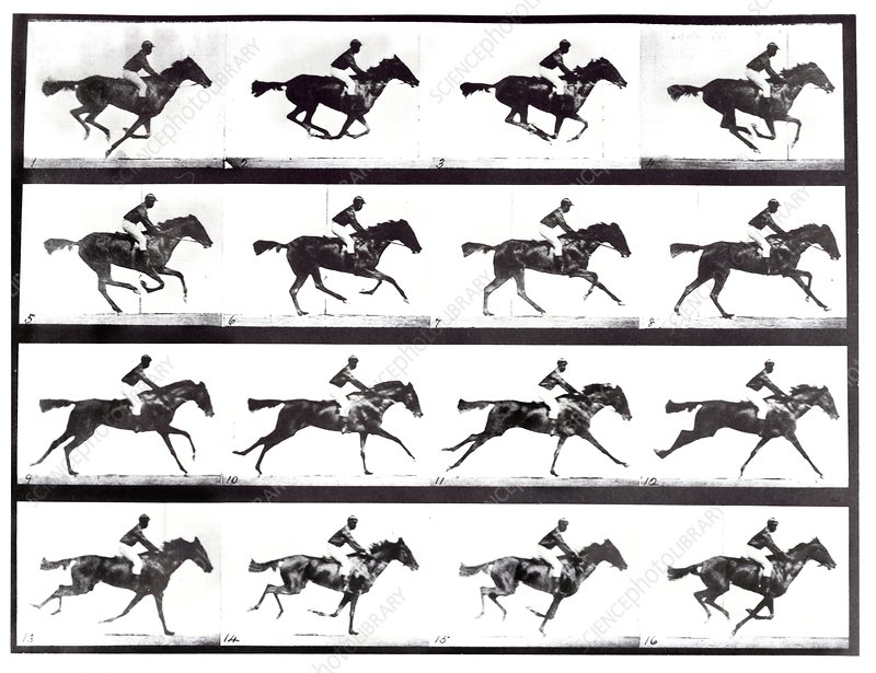 High-speed sequence of a galloping horse and rider