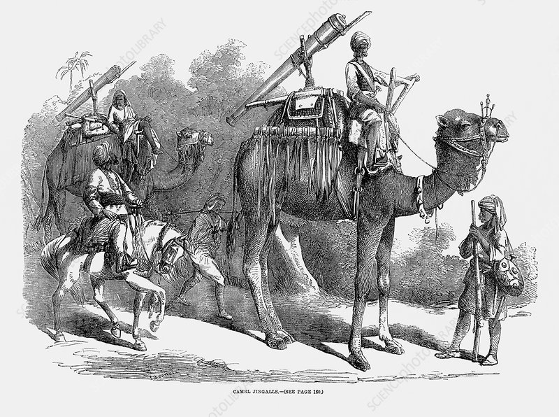 Cannons mounted on camels, 1858