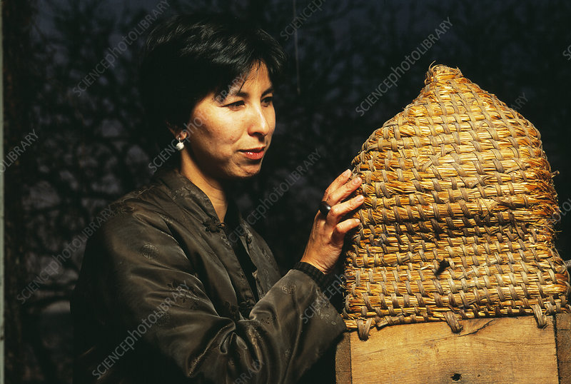Neurobiologist with beehive