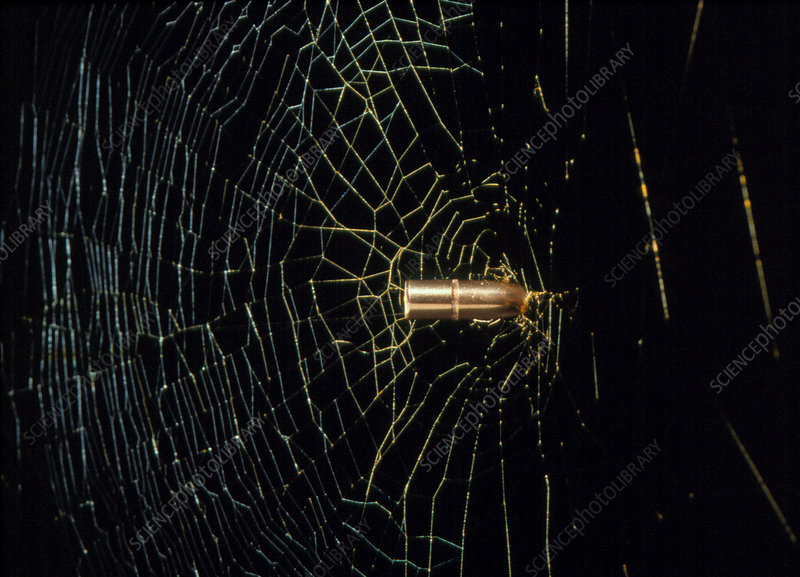 Conceptual image of spider's web stopping bullet