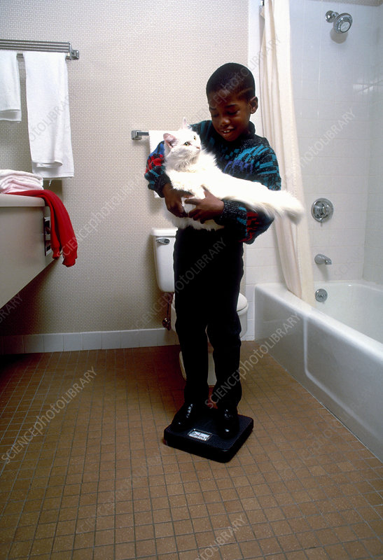 Boy weighing his cat