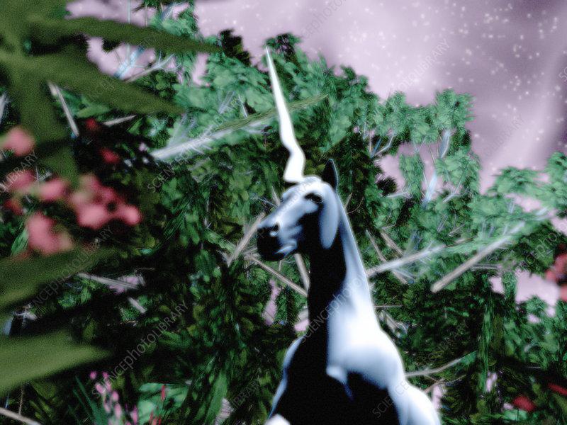 unicorn dating theory