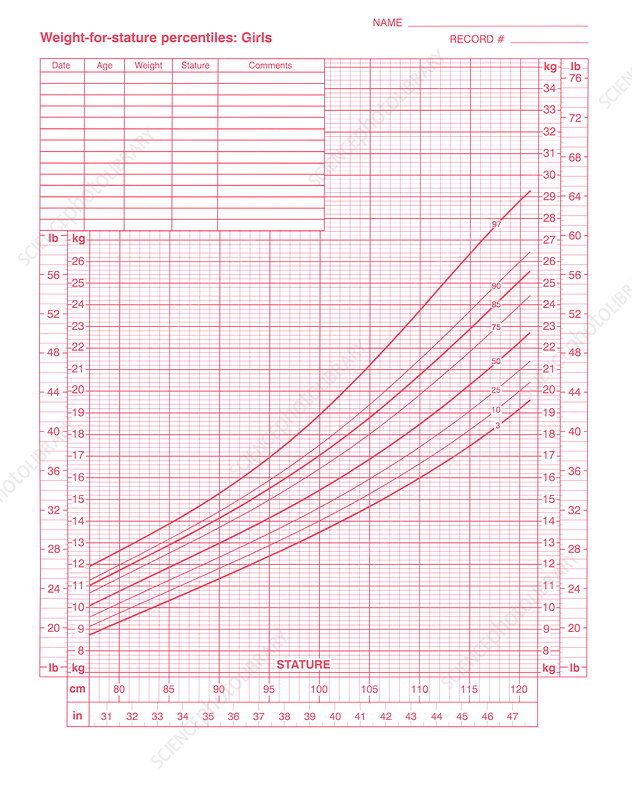Weight-for-stature chart - Stock Image - M825/0848 - Science