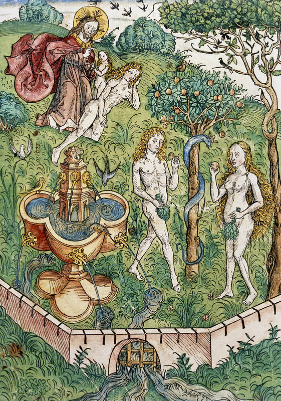 Illustration Of Adam And Eve In The Garden Of Eden Stock Image