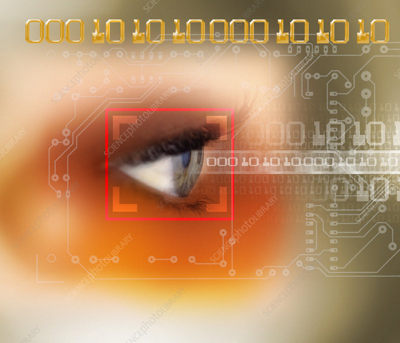 Eye scanning - Stock Image - T980/0226 - Science Photo Library